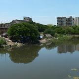 Sur le bord de la rivière Cooum