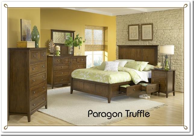paragon copy