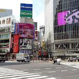 shibuya crossing with the starbucks in Shibuya, Tokyo, Japan