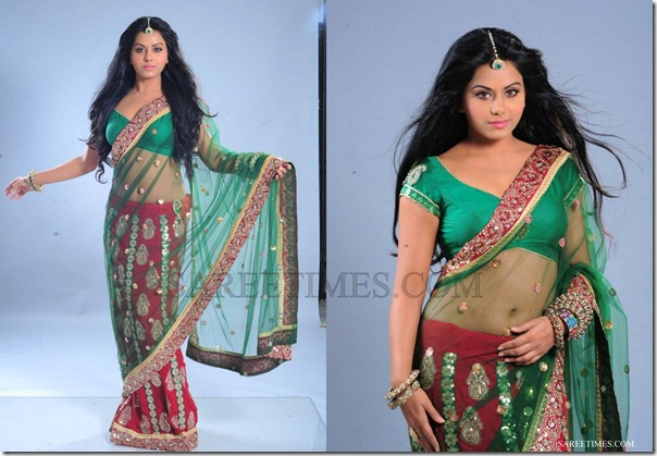 Rachana_Mourya_Green_Shimmer_Saree