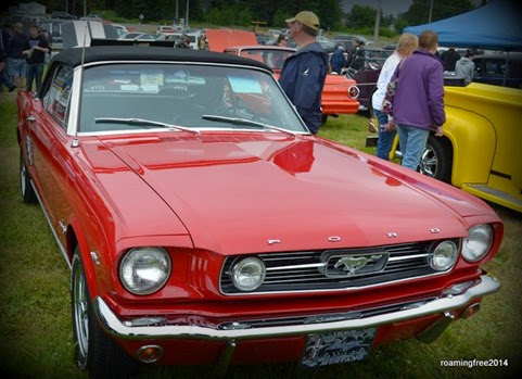 Another nice Mustang!