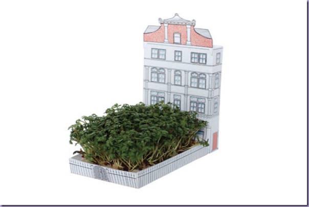Cartão-Postal-Plantinha--6