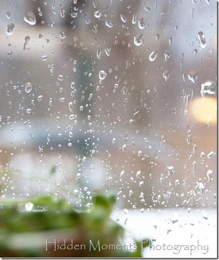 Day 11 - Rain, Rain Go Away