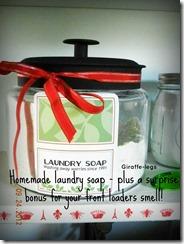 laundry soap1