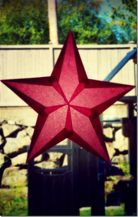 Red Window Star