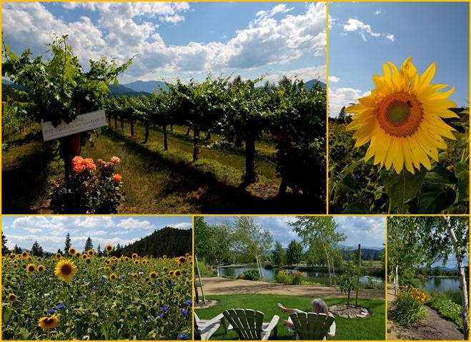 2012-07-19 Applegate Wineries
