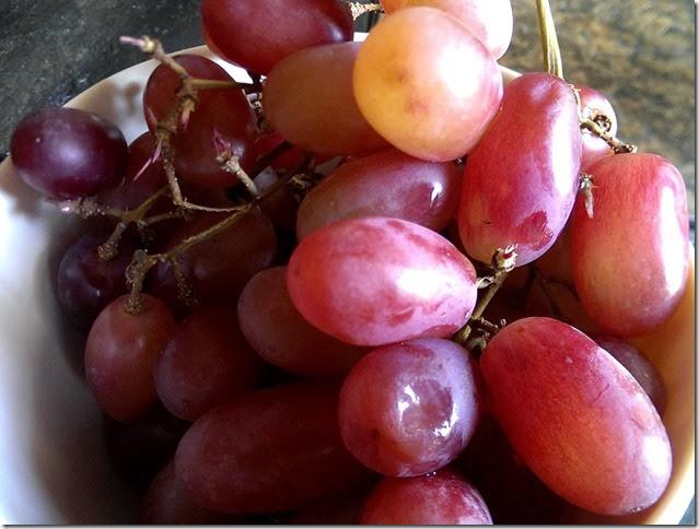 grapes-public-domain-pictures-1 (2305)