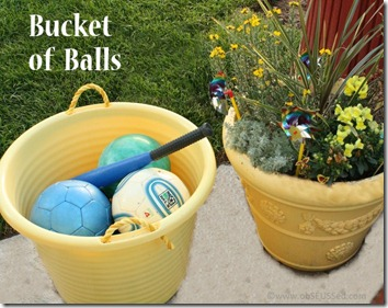 Ball Bucket ObSEUSSed