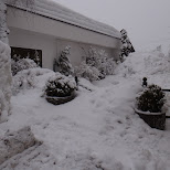 lots of snow in Seefeld, Tirol, Austria