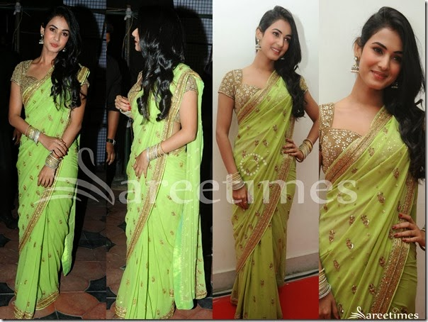 Sonal_Chauhan_Green_Embroidery_Saree