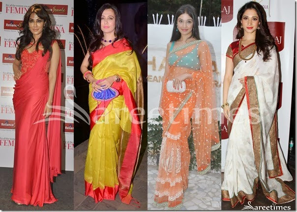 Bollywood_Saree_Fashion_October_2013(7)