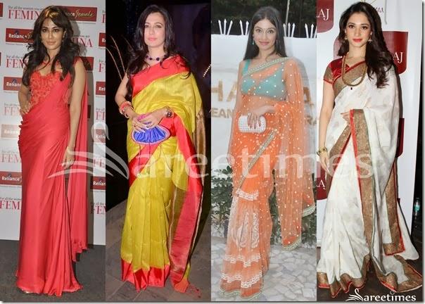 Bollywood_Saree_Fashion_October_2013(7)