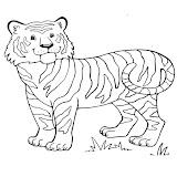 tigre4.jpg