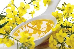 Rapeseed oil