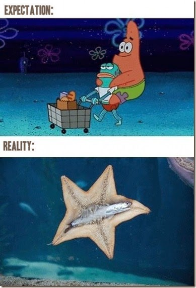 expectations-reality-009