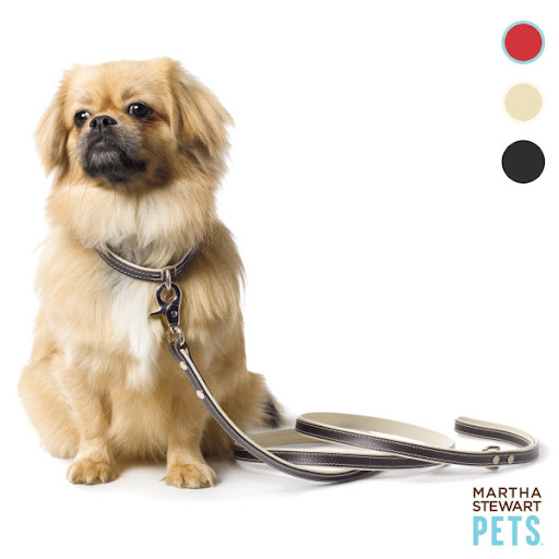 This classic leather leash is one of my favorites. (petsmart.com)