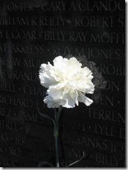 Memorial Day 2011 012