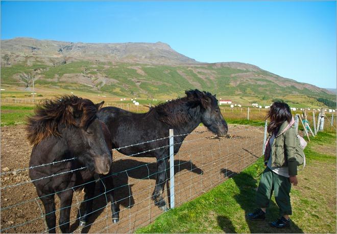 Iceland-0282