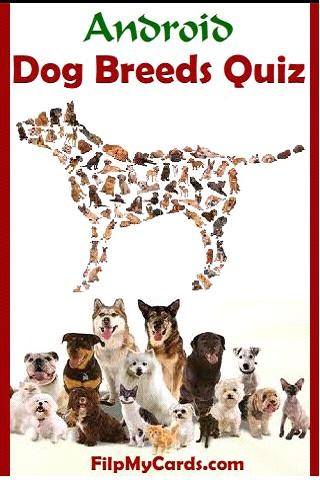 Dog Breed Picture Quiz