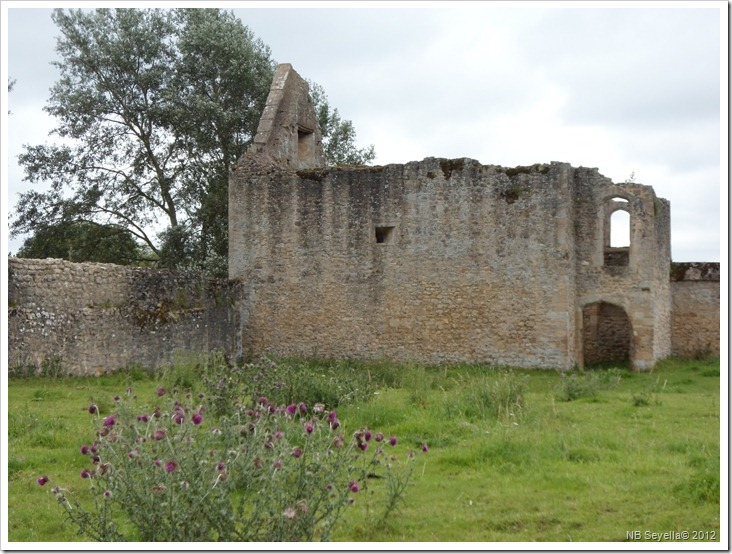 SAM_1639 Godstow Abbey