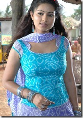 sneha-hot-spicy-photo