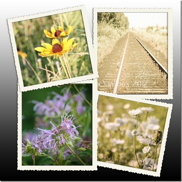 Along the tracks mosaic