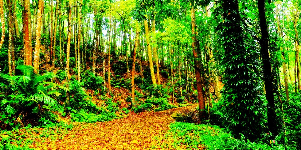 Mag-alambak Highlands