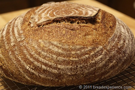 tartine-whole-wheat-bread_0869