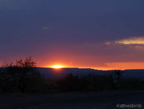 6. sunset in sahuarita-kab
