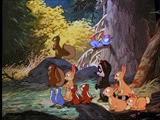 1-2 les animaux de la forêt