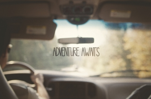 adventure_awaits_quote
