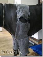 Tøj til Bacchus