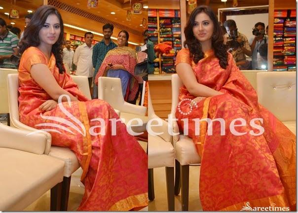 Isha_Chawla_Pink_Bridal_Silk_Saree(2)