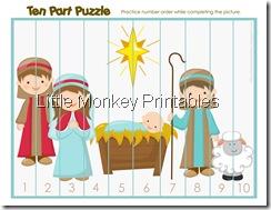ten part puzzle