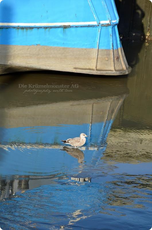 Wremer Hafen 231113 (4)