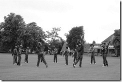 Its Cricket NO