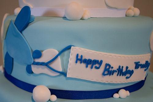 Airplane Cake-15