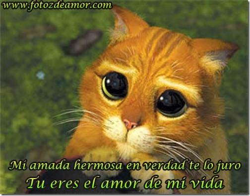 eres el amor de mi vida (4)