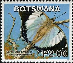 BW026.07