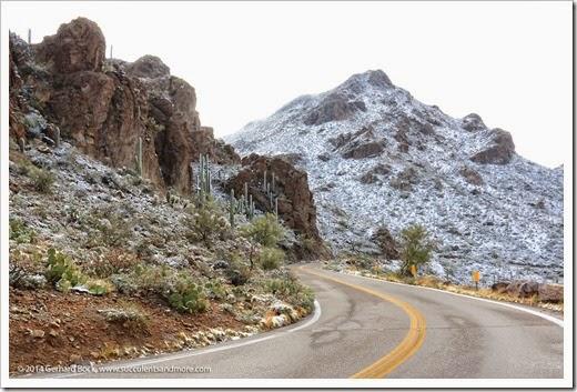 150101_TucsonMtPark_0093