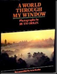 A World Through My Window 1