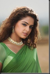 asmita in_ saree