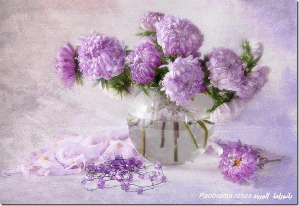 lilas-rosas-flores-facebook-tumblr-3