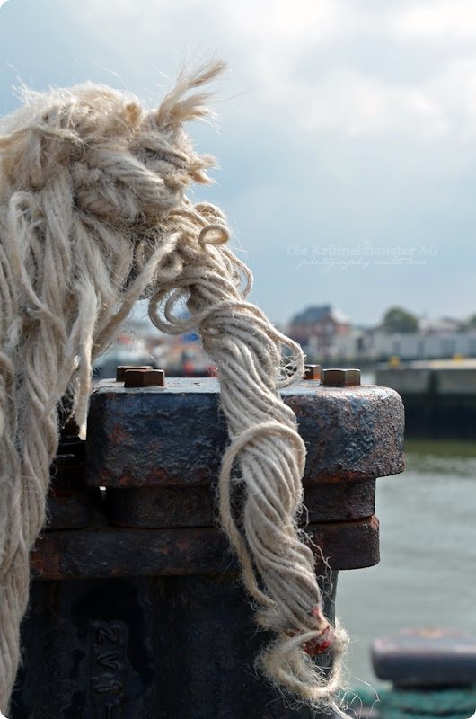 Wremen 07.08.14 Cuxhaven 184