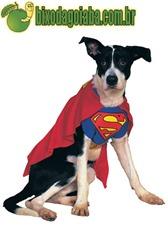 fantasia-carnaval-superdog
