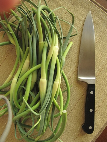 Garlic Scapes 001
