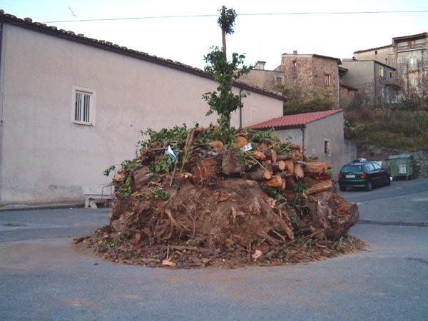 scigliano_live_4_20101009_2013931112.jpg