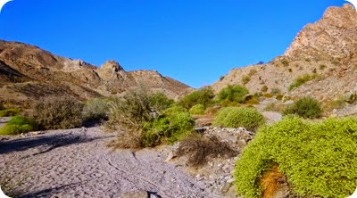 Morrow Trail