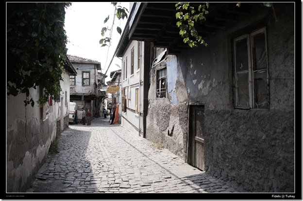 Turkey719