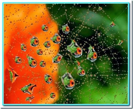 Gotas de energia